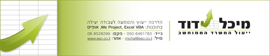 אקסל , הדרכת אקסל , Ms Project , מיכל דוד